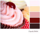 Cupcakes palette — Stock Photo