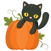 Halloween kitten and pumpkin — Stock Vector
