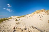 Moving dunes in Leba, Poland — Stock Photo