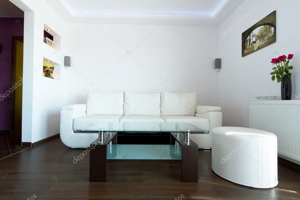 White leather sofa in living room interior — Stock Photo #12097574