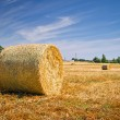 Hay bales on the field after harvest — Stock Photo #12587129
