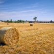 Hay bales on the field after harvest — Stock Photo #12587149