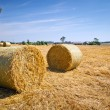 Hay bales on the field after harvest — Stock Photo #12587377