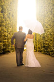 Portrait of married couple in the park — Stock Photo