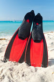 Red flippers at the Caribbean Sea — Stock Photo