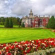 Adare gardens and castle in red ivy — Stock Photo #12600002