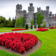 Stock Photo: Ashford castle and gardens in Co. Mayo