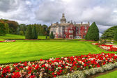 Adare gardens and castle in red ivy — Photo