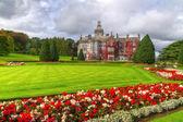 Adare jardins et château de lierre rouge — Photo