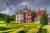 Adare gardens and castle in red ivy — Stock Photo