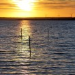 Stock Photo: Sunset at Baltic Sea
