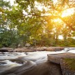 Stock Photo: Swedish creek at sunset