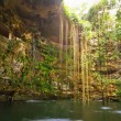 Stock Photo: Ik-Kil Cenote near Chichen Itza