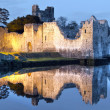 Stock Photo: Ruins of Adare castle at river