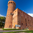 Medieval Teutonic castle in Swiecie — Stock Photo #13548489