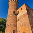 Medieval Teutonic castle in Swiecie — Stock Photo #13548500