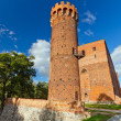 Medieval Teutonic castle in Swiecie — Stock Photo #13548535