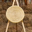 Stock Photo: Archery shooting target