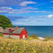 Red Swedish cottage house at Baltic Sea — Stock fotografie