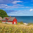 图库照片: Red Swedish cottage house at Baltic Sea
