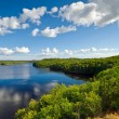 Foto de Stock  : Swedish lake in summer time