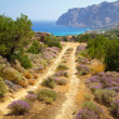 Side road at the sea on Crete — Stock Photo