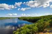 Lago sueco en el tiempo de verano — Foto de Stock