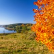 Autumnal scenery of meadow and lake — Fotografia Stock  #13971341