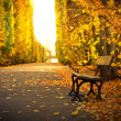Autumnal alley with empty bench — Stock Photo #16322027