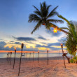 Sunset under tropical palm tree on the beach — Stock Photo