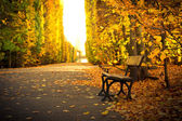 Autumnal alley with empty bench — Stock Photo