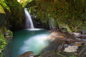 Paradise waterfall in the jungle — Stock Photo