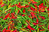 Red and green chili peppers — Stok fotoğraf
