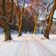 Stock Photo: Snowy road at sunset