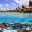 Tropical water of Maldives - Stock Photo