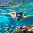 Snorkeling in the tropical water — Stock Photo #17822947