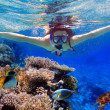 Snorkeling in the tropical water — Stock Photo #17823351