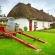 Stock Photo: Irish traditional cottage houses in Adare