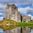 Dunguaire castle near Kinvarra in Co. Galway — Stock Photo #18735661