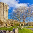 Stock Photo: 16th century Newtown Castle
