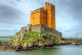 Kilcoe castle on the coast of Co. Cork — Stock Photo