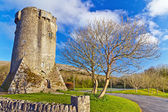 16th century Newtown Castle — Stock Photo