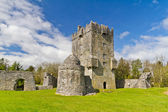Aughnanure Castle in Co. Galway — Stock Photo
