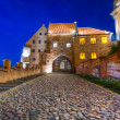 Granaries with water gate in Grudziadz at nigh — Stock Photo