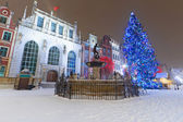 Artus Court of Gdansk in winter scenery with Christmas tree — Stock Photo