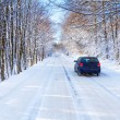 Stock Photo: Snowy road in winter forest