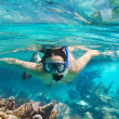 Snorkeling in the tropical water — Stock Photo #21231163