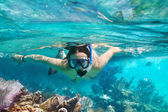 Snorkeling in the tropical water — Stock Photo
