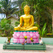 Statue of golden Buddha at the jungle — Stock Photo