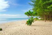 Mer de la plage idyllique d'andaman dans koh kho khao — Photo